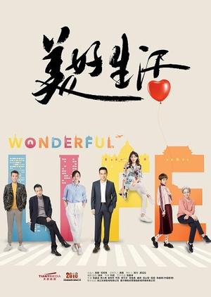 Image Of Drama Wonderful Life KDRAMA